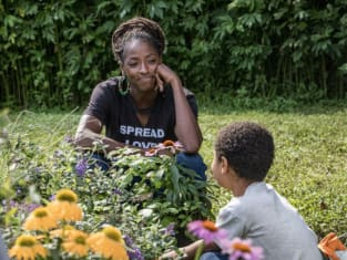 Nova Spreads the Love - Queen Sugar