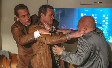 Jack Attacks Savino
