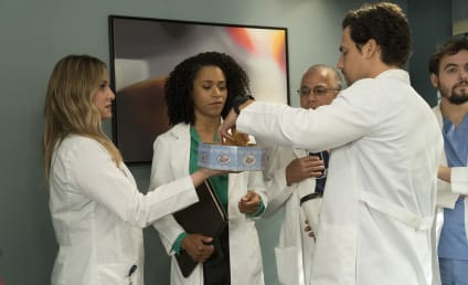 Grey's Anatomy Season 14 Episode 20 Review: Judgment Day