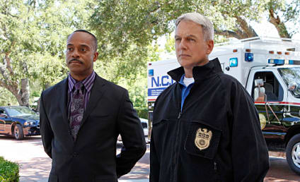 NCIS Spoilers: A Surprising Return By ...