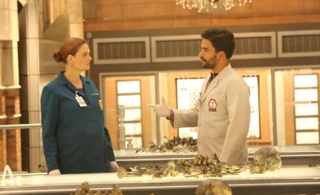 Brennan and Fuentes Investigate a Lead - Bones Season 10 Episode 18