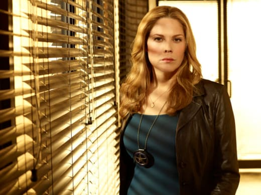 Mary McCormack Promo Pic