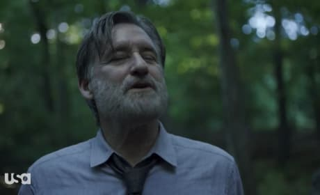 In the Woods - The Sinner Season 2 Episode 4