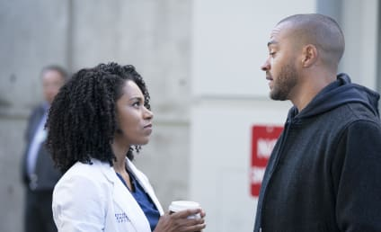 Watch Grey's Anatomy Online: Season 14 Episode 15