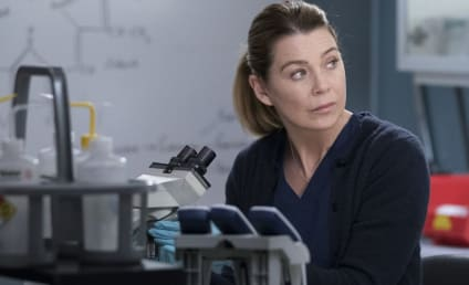Grey's Anatomy Season 16 Finale Crushes Ratings Records