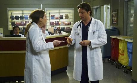 Friendly Debate - Grey's Anatomy Season 13 Episode 23