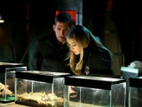 CSI Season 15 Episode 17