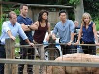 Hawaii Five-0 Season 6 Episode 9