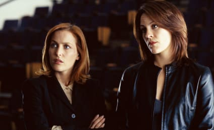 The X-Files Recruits Annabeth Gish to Reprise Role as Agent Reyes