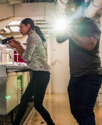 Couple Search - Hawaii Five-0 Season 10 Episode 18