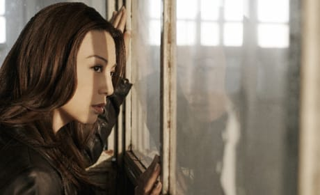 Ming-Na Wen as Agent Melinda May - Agents of S.H.I.E.L.D.