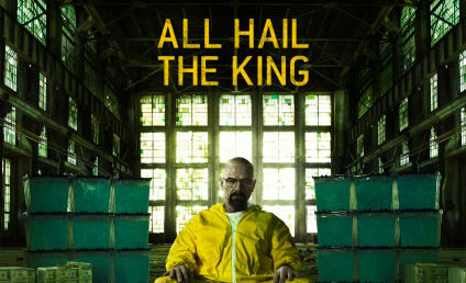 Breaking Bad Season 5 Poster, AMC Synopsis: Released!