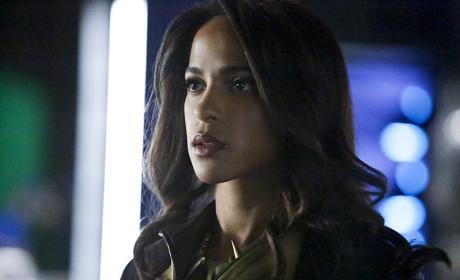 Vixen Portrait - Arrow Season 4 Episode 15