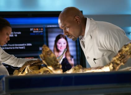 Watch Rosewood Season 1 Episode 20 Online