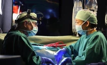 "Grey's Anatomy Episode Preview: ""Beautiful Doom"""