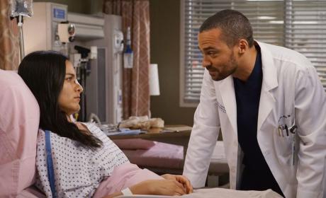 Jackson's Patient - Grey's Anatomy