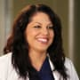 Callie Torres - Grey's Anatomy