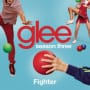 Glee cast fighter