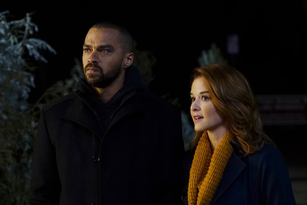 Watch Greys Anatomy Online Season 13 Episode 16 Tv Fanatic