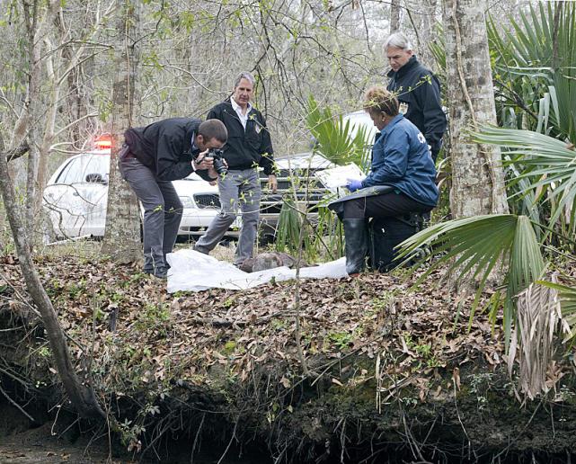 A Body on the Bayou