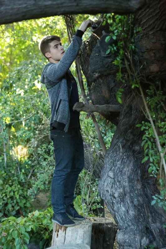 Tree Climbing - Pretty Little Liars Season 5 Episode 20