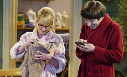 Watch The Big Bang Theory Online: Season 9 Episode 16