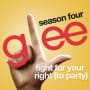 Glee cast fight for your right to party