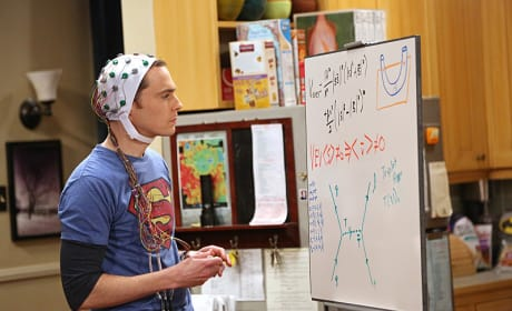 Sheldon's Experiment - The Big Bang Theory