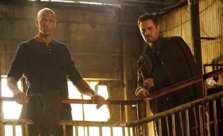Director Ward Schemes - Agents of S.H.I.E.L.D.