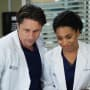 Playing Parents - Grey's Anatomy Season 13 Episode 14
