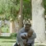 Taken Hostage - Criminal Minds Season 14 Episode 7