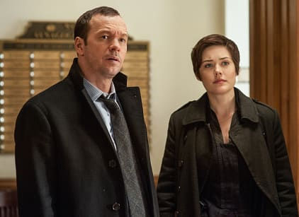 Watch Blue Bloods Season 3 Episode 14 Online