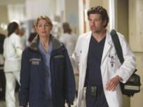 Meredith and Derek Shepherd