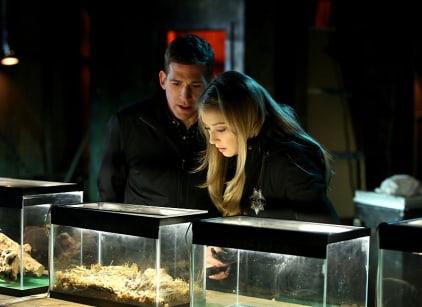 Watch CSI Season 15 Episode 17 Online