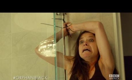 Orphan Black Season 2 Preview