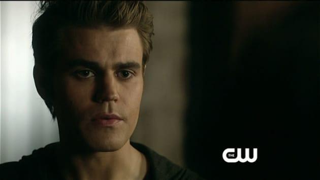 Close Up of Stefan