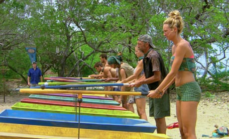 Another Immunity Challenge - Survivor