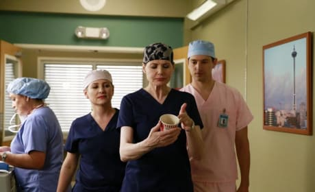 Dr. Hermann Photo - Grey's Anatomy Season 11 Episode 8