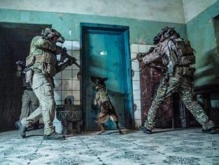 A New Terrorist Leader - SEAL Team
