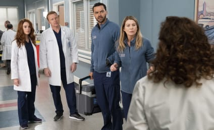 Grey's Anatomy Season 15 Episode 20 Review: The Whole Package