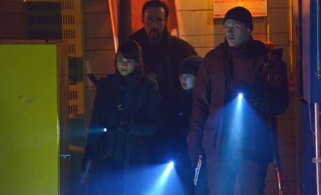 """The Strain Photos from """"The Battle For Red Hook"""""""