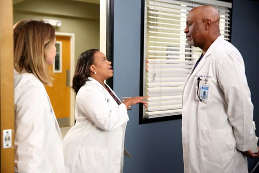Tell Him, Bailey! - Grey's Anatomy Season 12 Episode 2
