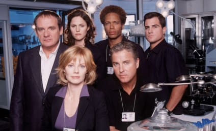 CSI Revival in the Works at CBS - Who's Returning?