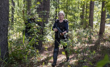 Watch The Walking Dead Online: Season 8 Episode 14
