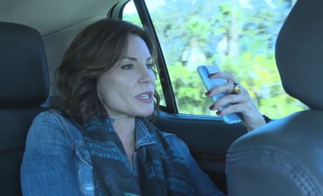 LuAnn's Drama - The Real Housewives of New York City