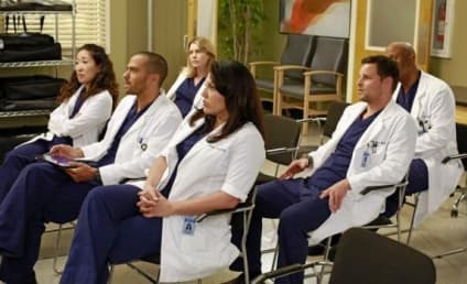 Grey's Anatomy Season 9 Report Card: B-