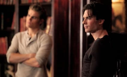 The Vampire Diaries Fan Fiction Contest: How Will Season Conclude?
