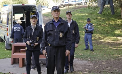 NCIS Season 13 Episode 6 Review: Viral