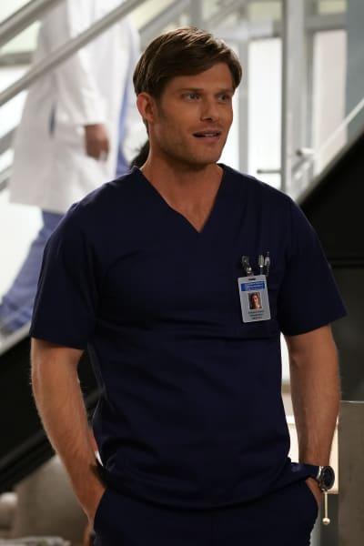 Link is Amused  - Grey's Anatomy Season 16 Episode 20