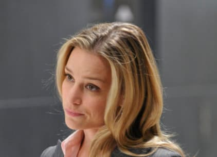 Watch Covert Affairs Season 1 Episode 1 Online